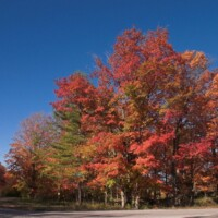 Banks Township Color Tour corner of Rex Beech Road and Old Dixie Highway